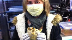 La foto de esta mujer con su corazón en las manos conmueve Internet