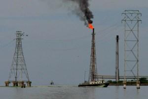 En abril, la producción de petróleo de Venezuela cayó 15%, según la Opep
