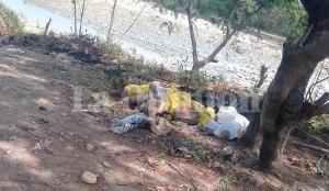 Trochas del terror: Hallaron cadáver de un hombre a orillas del río Táchira