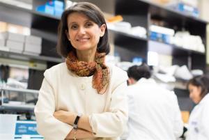 Desarrollan fármaco que revierte los síntomas del alzhéimer en ratones