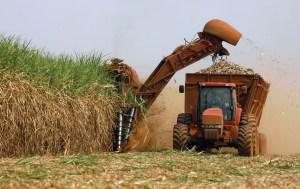 Brasil lanza metas de reducción de carbono para la agricultura